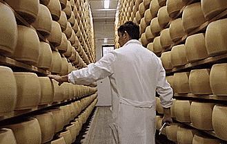 Vi sao pho mai parmesan cua Italy co gia ca nghin USD? hinh anh